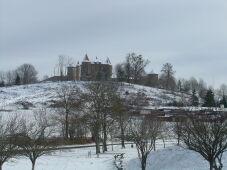 Castle-_Vernet-la-Varenne.jpeg