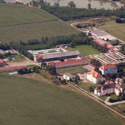 Vue aérienne : une partie de l'institut Saint-André entouré de champs