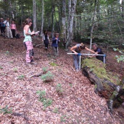 Inventaire de vieilles forêts avec les élus © Nature en Occitanie