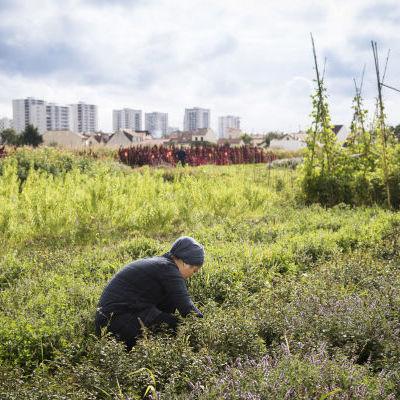 Yuhan, woofeuse à Zone Sensible © Jean-Pierre Sageot